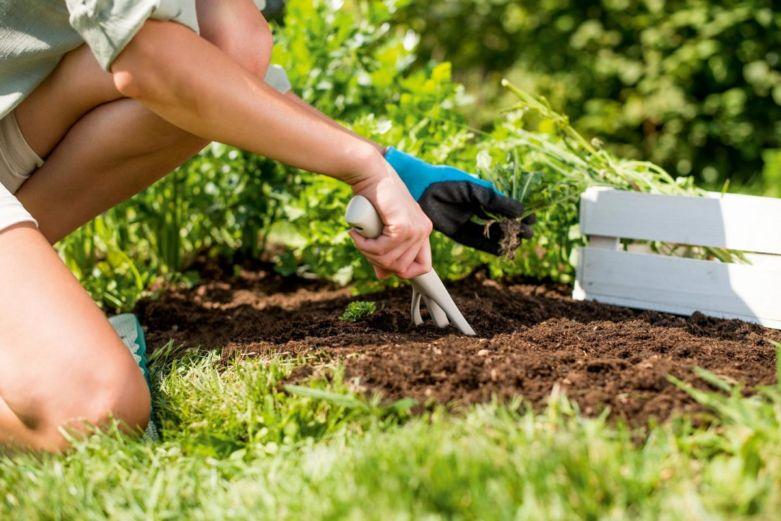 средство для уничтожения травы и сорняков