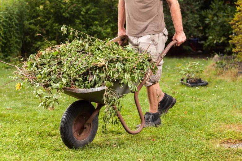 куда девать сорняки после прополки