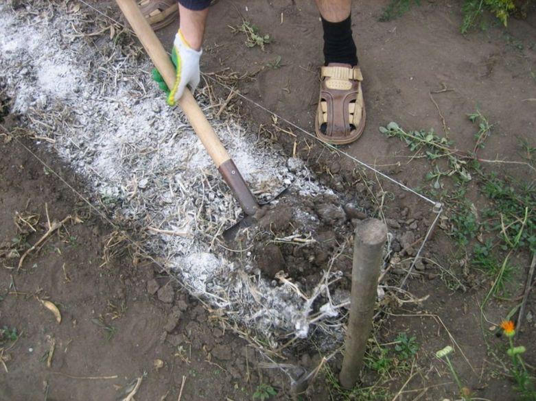 как избавиться от травы на участке навсегда