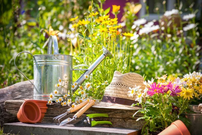 календарь сезонных работ в саду
