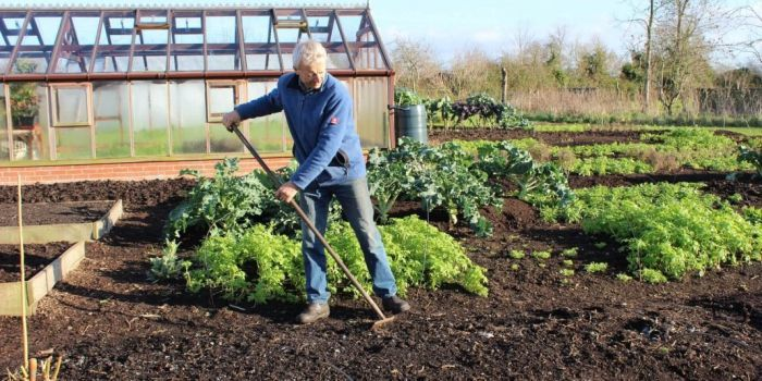 работа в огороде по месяцам
