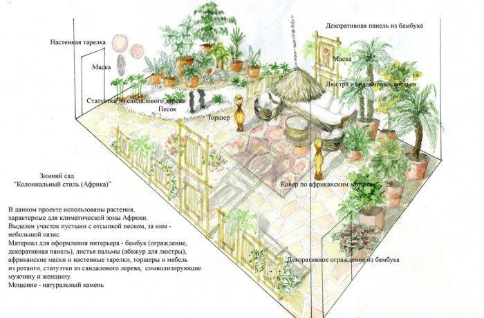 размещение растений в зимнем саду