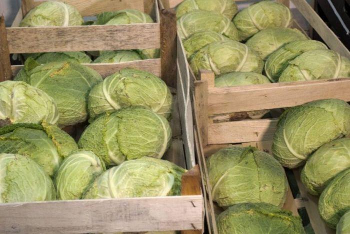хранрение белокачанной капусты в ящиках