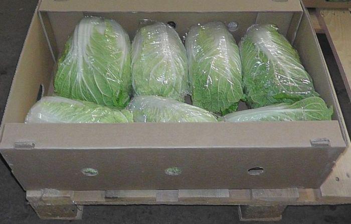 как хранить пекинскую капусту на зиму