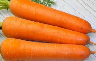 красивая спелая морковь для хранения