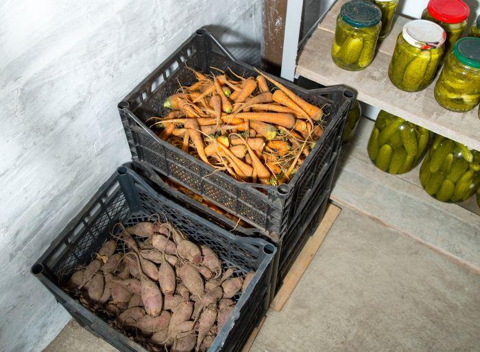 как хранить морковь в домашних условиях зимой