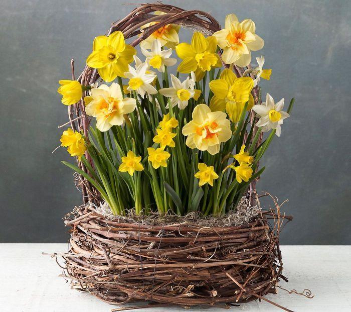 цветы в корзине для участка