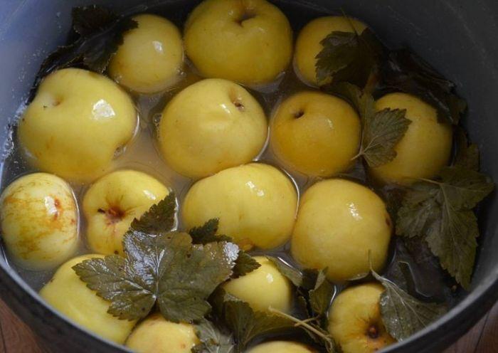 мочение яблок в кадке старинный рецепт