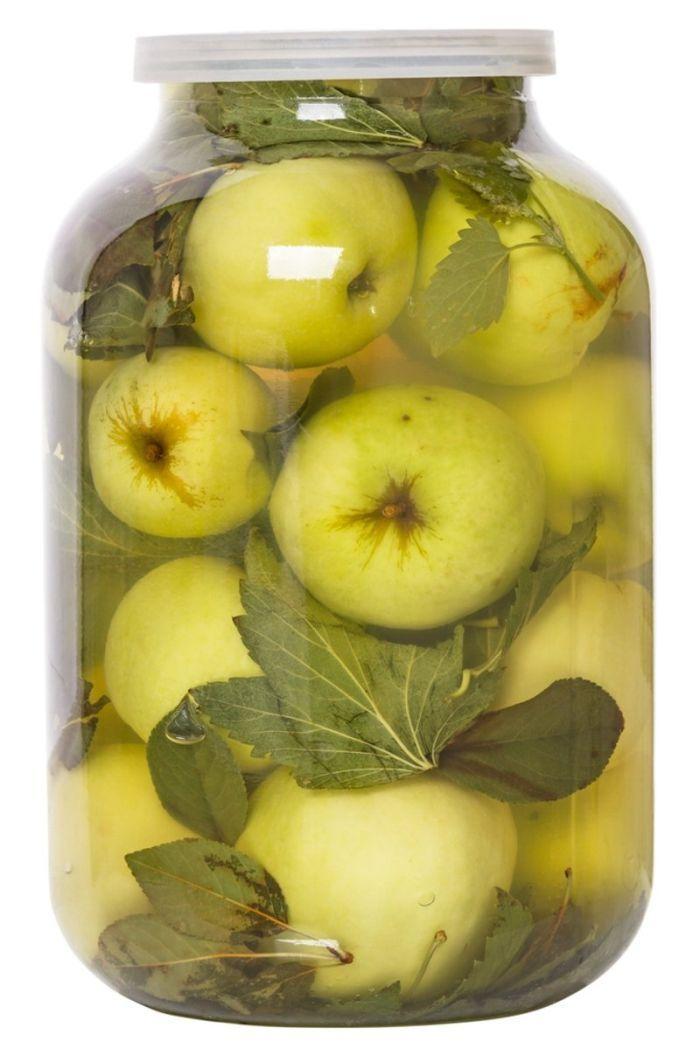 как хранить моченые яблоки