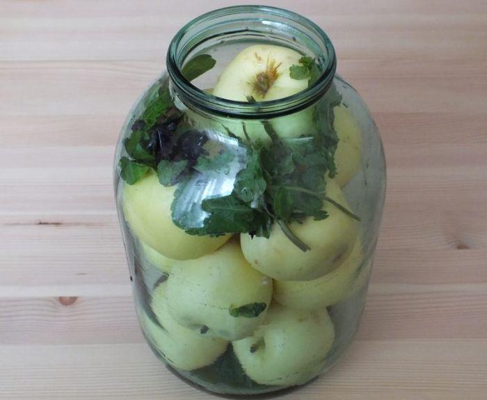 яблоки с травами в банке