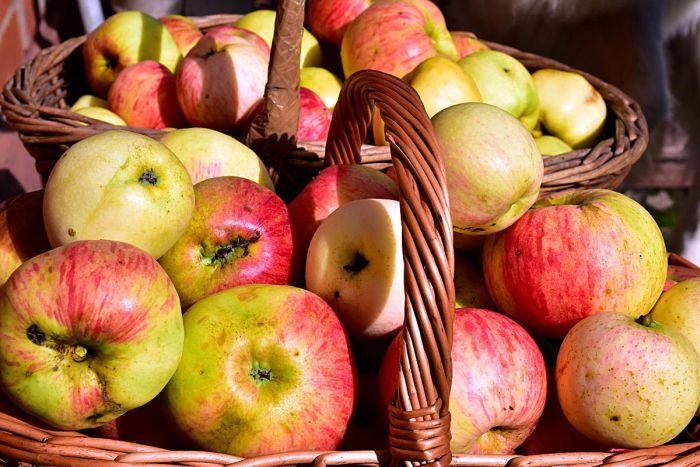 каике яблоки можно хранить до зимы