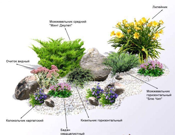 проект альпийской горки с перечнем растений