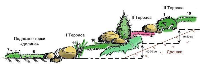 устройство альпинария схема