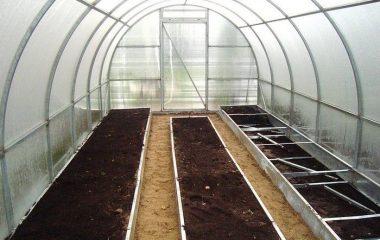 обработка теплицы осенью после сбора урожая